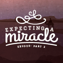 Expecting a Miracle 4