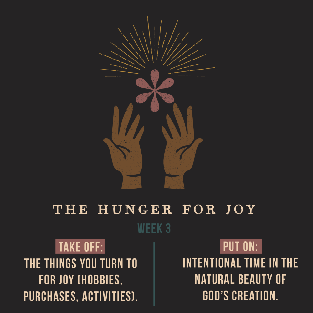 the-hunger-for-joy-wk-3-01.png