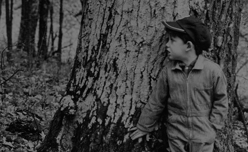 Wendell Berry's radical conservatism